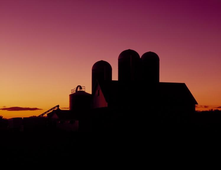 dairy-barn-1468954